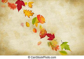 coloridos, outonal, fundo, com, folhas