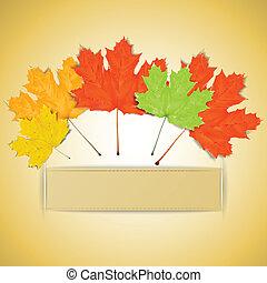 coloridos, outono sai, com, lugar, para, seu, texto
