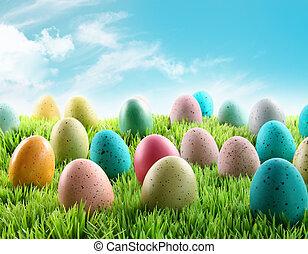 coloridos, ovos páscoa, em, um, campo, de, capim