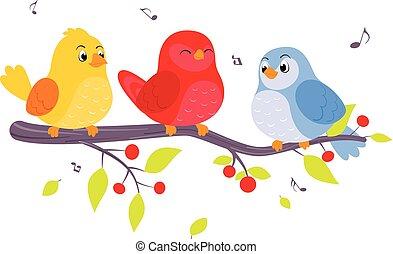 coloridos, pássaros, sentando, ligado, ramos