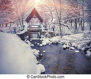 coloridos, pôr do sol, inverno, cidade, park.