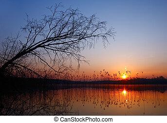 coloridos, pôr do sol, sobre, água