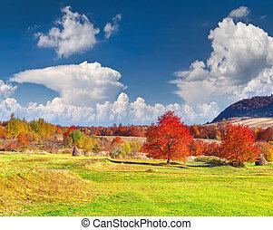 coloridos, paisagem outono, montanhas