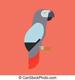coloridos, papagaio, natureza, animal estimação, raça, parakeets, ilustração, pássaro, tropicais, vetorial, animal, educação, espécie