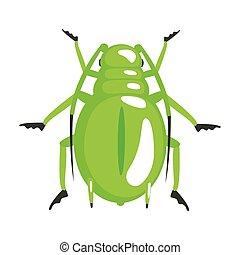 coloridos, personagem, verde, besouro, longhorn, caricatura