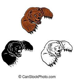 Coloring book Bear cartoon character - vector illustration .EPS10