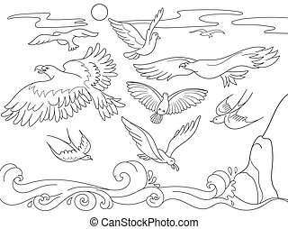 coloring book cartoon for children. Above the sea birds of different kinds fly. Black and white lines
