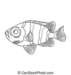Coloring book for children, fish