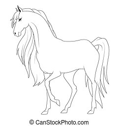Coloring book: horse