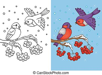 Coloring Book Of Bullfinches Sitting On Branch - Vector...