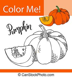 Coloring book or page of vegetable. Vector illustration with hand drawn pumpkin