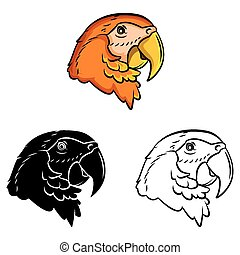 Coloring book Parrot cartoon character - vector illustration .EPS10