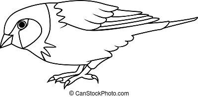 Coloring book: Sparrow