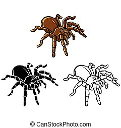 Coloring book Tarantula character