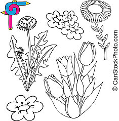 Coloring image flowers
