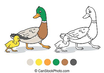 Coloring page. Mother duck and duckling.
