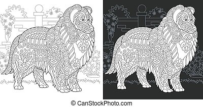 Coloring page with collie dog