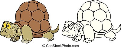 tortoise - coloring pages for childrens with funny...