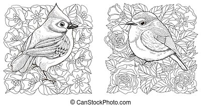 Coloring pages. Birds in spring floral garden. Line art design for adult colouring book with doodle and zentangle elements