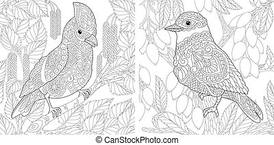 Coloring pages. Cute birds sitting on tree branches. Line art design for adult colouring book with doodle and zentangle elements.