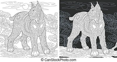 Coloring pages with wildcat