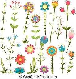 colorito, cartone animato, fiori selvaggi, isolato, collezione