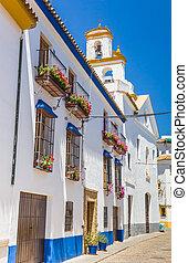 colorito, cordoba, strade, case, fiori bianchi
