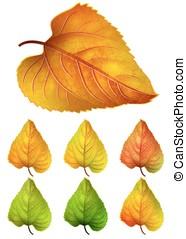 colorito, foglie, -, collezione, giallo, autunno