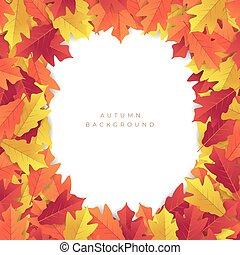 colorito, foglie, giallo, autunno, fondo., rosso