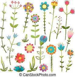 colorito, isolato, collezione, fiori selvaggi, cartone animato