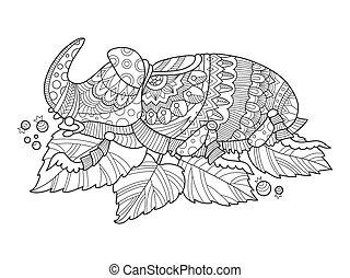 coloritura, rinoceronte, insetto, vettore, scarabeo, libro
