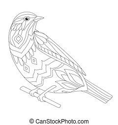 coloritura, seduta, tuo, divertire, ramo, uccello, pagina
