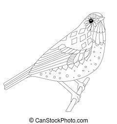 coloritura, seduta, tuo, ramo, aggraziato, uccello, pagina