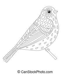 coloritura, seduta, tuo, ramo, bello, uccello, pagina
