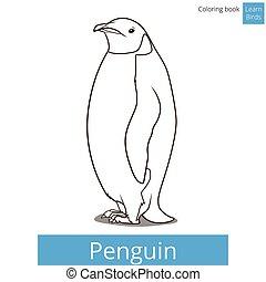 coloritura, uccello, libro, vettore, imparare, uccelli, pinguino