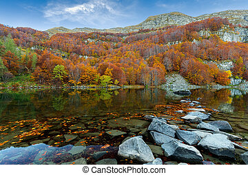 colors in autumn lake