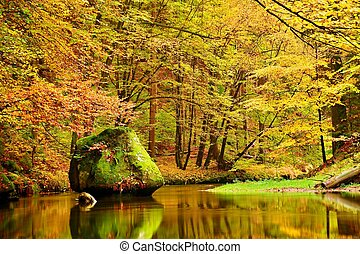 Colors of autumn mountain river. Colorful banks with leaves, trees bended above river. Big boulder in the river