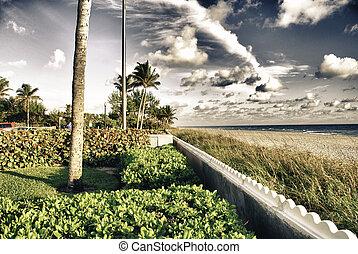Colors of Miami in Florida