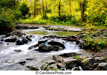 Colors of summer mountain stream
