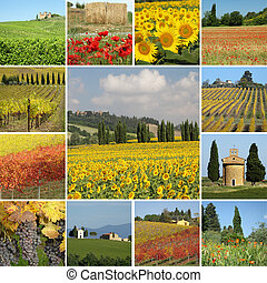 collgae with colorful scenery of tuscan countryside, Italy