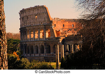 Colosseo - Golden afternoon shot of the Coliseum in Rome,...