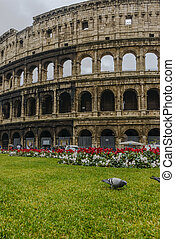 Colosseum in a cloudy day