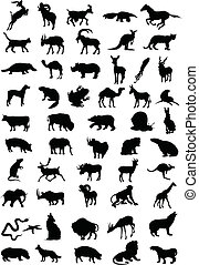 colour., illustration, silhouettes, vecteur, noir, animal