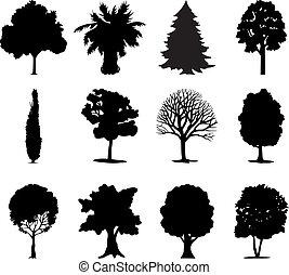 colour., ilustração, one-ton, vetorial, pretas, árvores