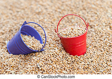 Coloured buckets of wheat.