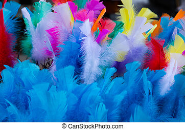 Coloured easter feathers - Soft and colourful easter...