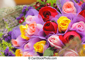 colourful, роза