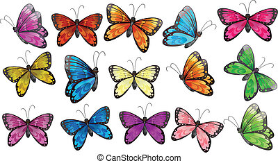 Illustration of the colourful butterflies on a white background