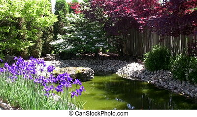 Colourful corner of Japanese Garden - Moving Picture of...