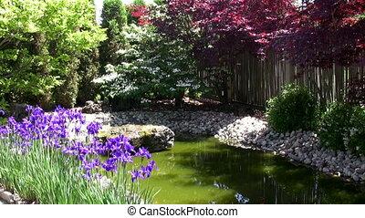 Colourful corner of Japanese Garden